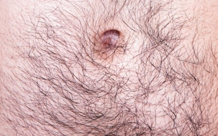 hairy stomach of a white male
